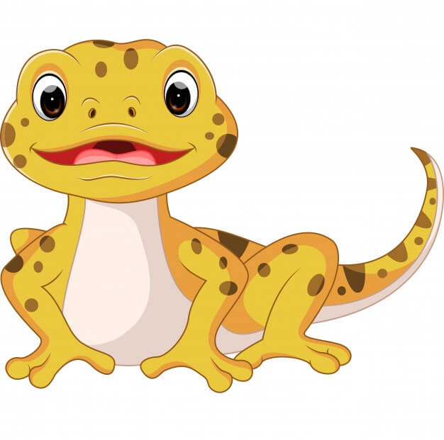 Leopard gecko - complete guide on how to take care of your pet
